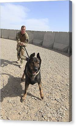 Working Dog Canvas Print - British Soldier Restrains His Military by Stocktrek Images