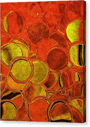 Tangerines Canvas Print - Brocade Circles by Bonnie Bruno