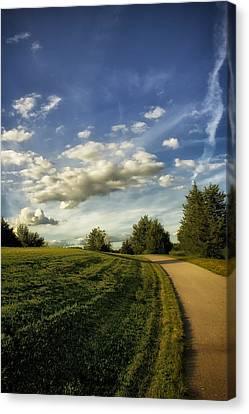 Broemmelsiek Park Walking Track Canvas Print by Bill Tiepelman