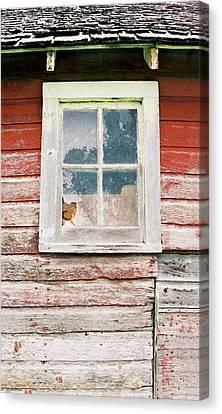 Broken Barn Window Canvas Print