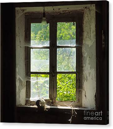 Broken Window. Canvas Print by Bernard Jaubert
