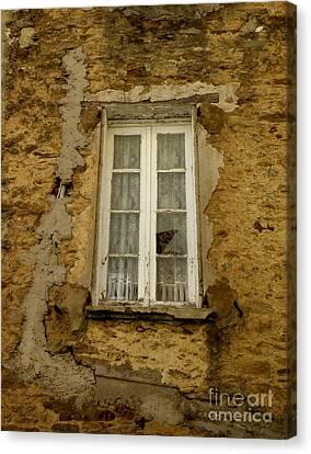 Broken Window Canvas Print by Lainie Wrightson