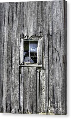 Broken Windows Canvas Print by David Bearden