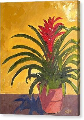 Bromeliad  Canvas Print by Maria Soto Robbins