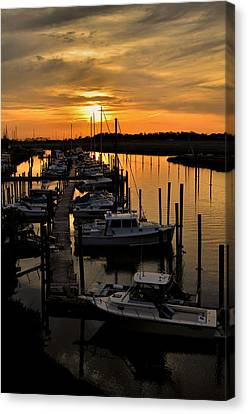 Bronze Canvas Print