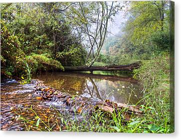 Smokey Mountains Canvas Print - Brook Reflections by Debra and Dave Vanderlaan