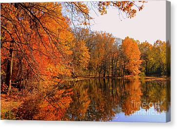 Brooks Pond   Canvas Print