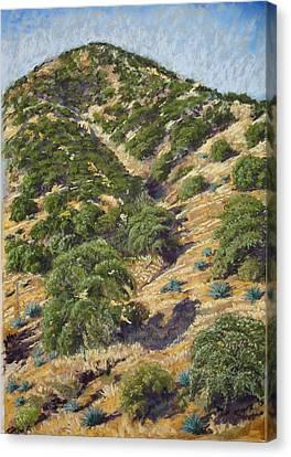 Brown Canyon Canvas Print