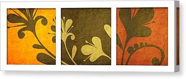 Brown Decor Canvas Print by Nomi Elboim