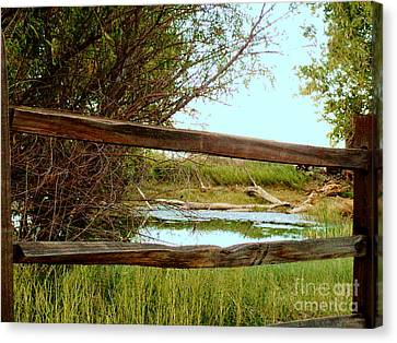 Brown Ranch Trail Canvas Print - Brown Ranch Pond Of Ramsey Canyon by Stanley Morganstein