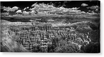 Bryce Canyon - Black And White Canvas Print by Larry Carr