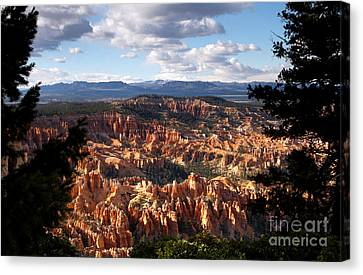 Bryce Canyon Ampitheater Canvas Print by Butch Lombardi