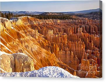 Bryce Canyon Canvas Print by Brian Jannsen
