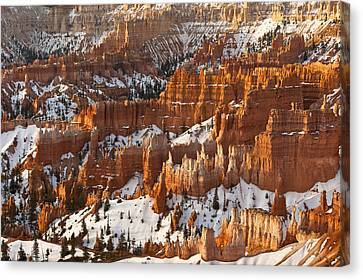 Bryce Canyon Morning Light  Canvas Print