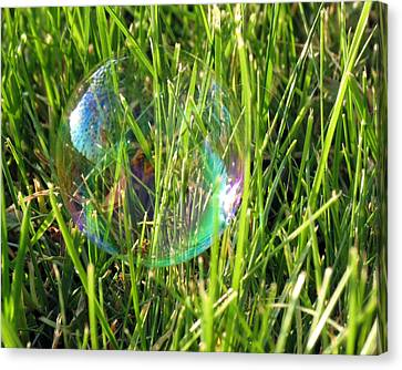 Canvas Print featuring the photograph Bubble In The Grass by Darleen Stry