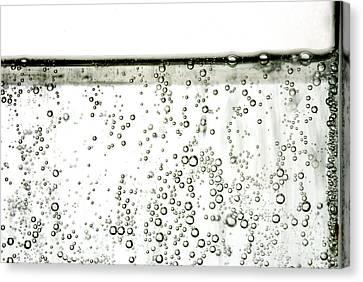 Bubbles Canvas Print by Photo Researchers, Inc.