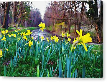 Bucks County Spring Canvas Print by Bill Cannon