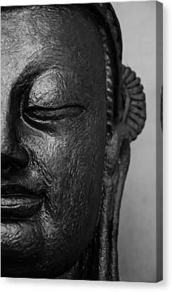 Buddha In Your Mirror PDF EPUB Download – Cause of You ...