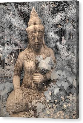 Buddha Nature Canvas Print by Jane Linders