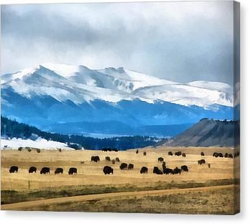 Buffalo Herd Painterly Canvas Print by Ernie Echols