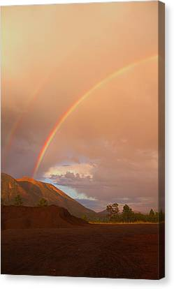 Canvas Print featuring the photograph Buffalo Rainbow by Tom Kelly