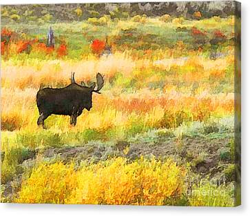 Canvas Print featuring the photograph Bull Moose by Clare VanderVeen