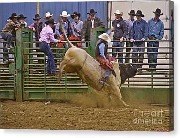 Bull Rider 2 Canvas Print by Sean Griffin