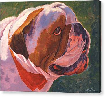 Bully For Me Canvas Print by Shawn Shea