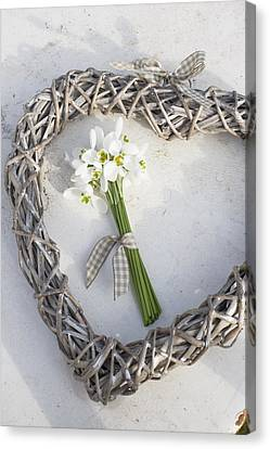 Bunch Of Snowdrops (galanthus Nivalis) In Heart Wreath Canvas Print by Juliette Wade