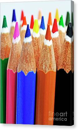 Bunch Of Standing Colorful Crayons Canvas Print by Sami Sarkis