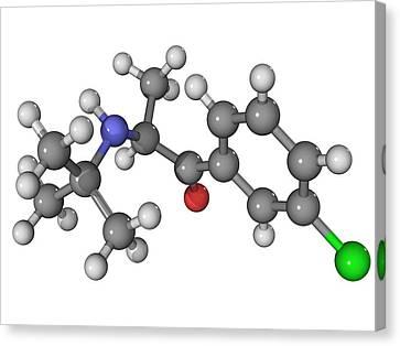 Bupropion Antidepressant Drug Molecule Canvas Print by Laguna Design