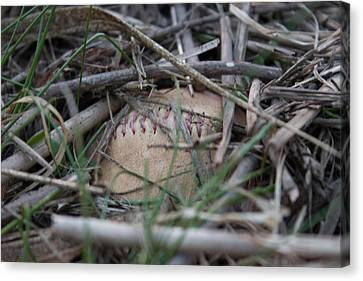 Canvas Print featuring the photograph Buried Baseball by Stephanie Nuttall