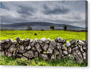 Canvas Print featuring the photograph Burren Stones by Juergen Klust