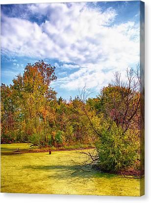 Busch Wildlife Swampy Autumn - 2 Canvas Print by Bill Tiepelman