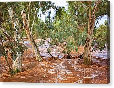Bush Flood Canvas Print by Paul Svensen