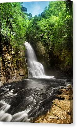 Bushkill Waterfalls Canvas Print by Yhun Suarez