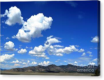 Butte Valley Nevada Canvas Print