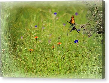 Butterflies Making Love In The Meadow Canvas Print by John  Kolenberg
