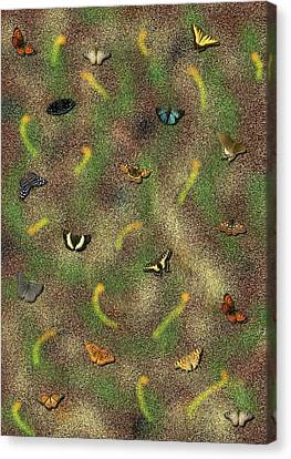 Canvas Print - Butterflies by Tinatin Dalakishvili