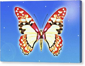 Computer Graphics Canvas Print - Butterfly by Chris Knorr
