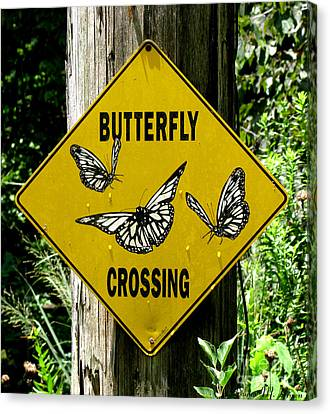 Butterfly Crossing Canvas Print