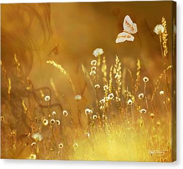 Butterfly Kiss Canvas Print by Torie Tiffany