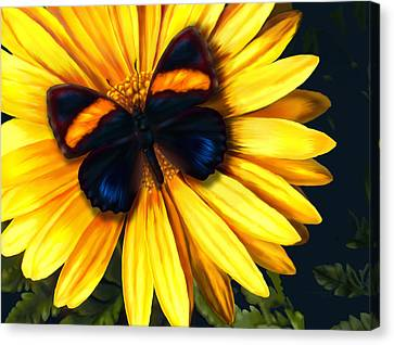 Butterfly On Yellow Canvas Print by Virginia Palomeque