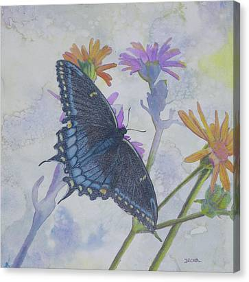 Canvas Print featuring the painting Butterly by Robert Decker