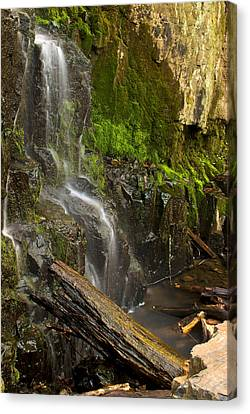 Buttermilk Falls Canvas Print by Mike Horvath
