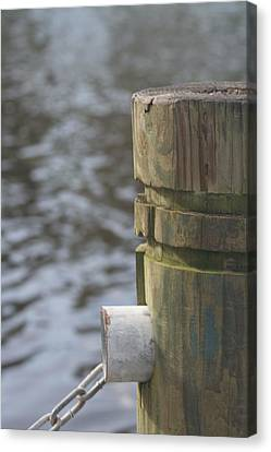 By The River Canvas Print by Lou Belcher