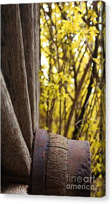 Canvas Print featuring the photograph By The Rock Wall 2 by Laurinda Bowling