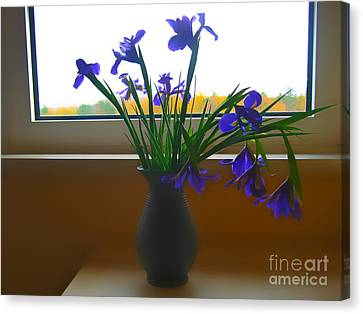 By The Window Canvas Print by Anita Antonia Nowack
