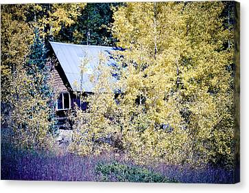 Cabin Hideaway Canvas Print by James BO  Insogna