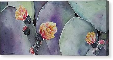 Cactus Bloom Canvas Print by Regina Ammerman